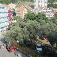 Iznajmljivanje stan broj 6 , 150 m od mora u Rafailovicima ( 60 kvadrata)